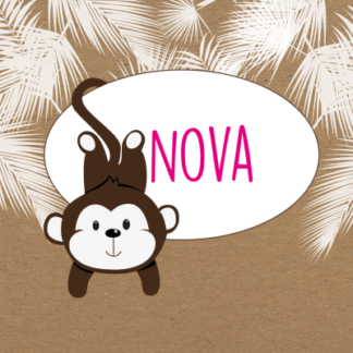 Meneer Vogel - apen - Nova