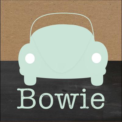Meneer Vogel - auto's - Bowie