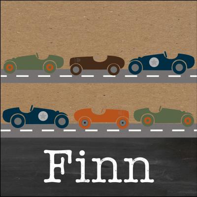 Meneer Vogel - auto's - Finn