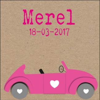Meneer Vogel - auto's - Merel