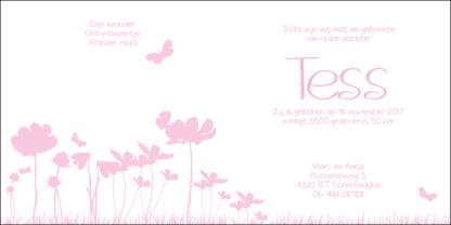 Geboortekaartje met bloemen en vlindertjes