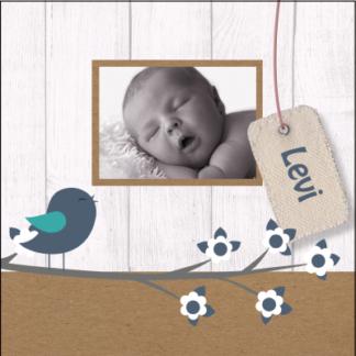 Trendy kaartje met foto van de baby' de combinatie van achtergrond en beeld maken het een lief kaartje