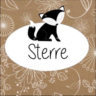 Retro ontwerp met bloemen en vosje helemaal zwart wit en trendy voor een stoere jongen of meisje