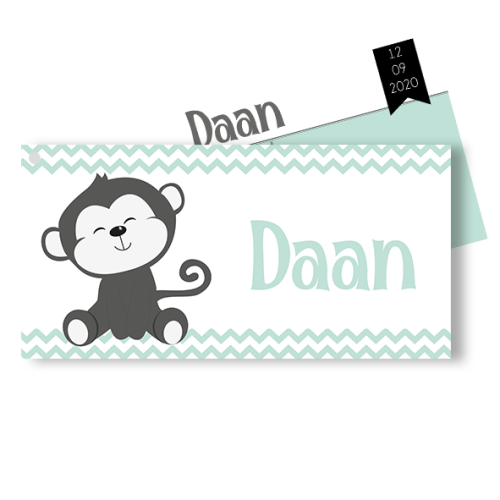 Geboortekaartje als liggend label aapje in mint wit en grijs
