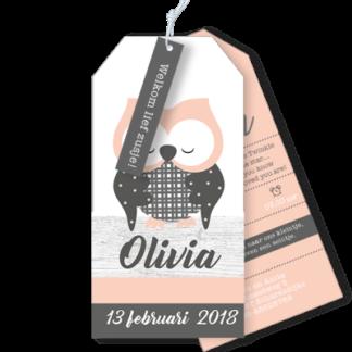 Geboortekaartje als label met uiltje Olivia