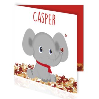 Geboortekaartje olifantje met herfstbladeren