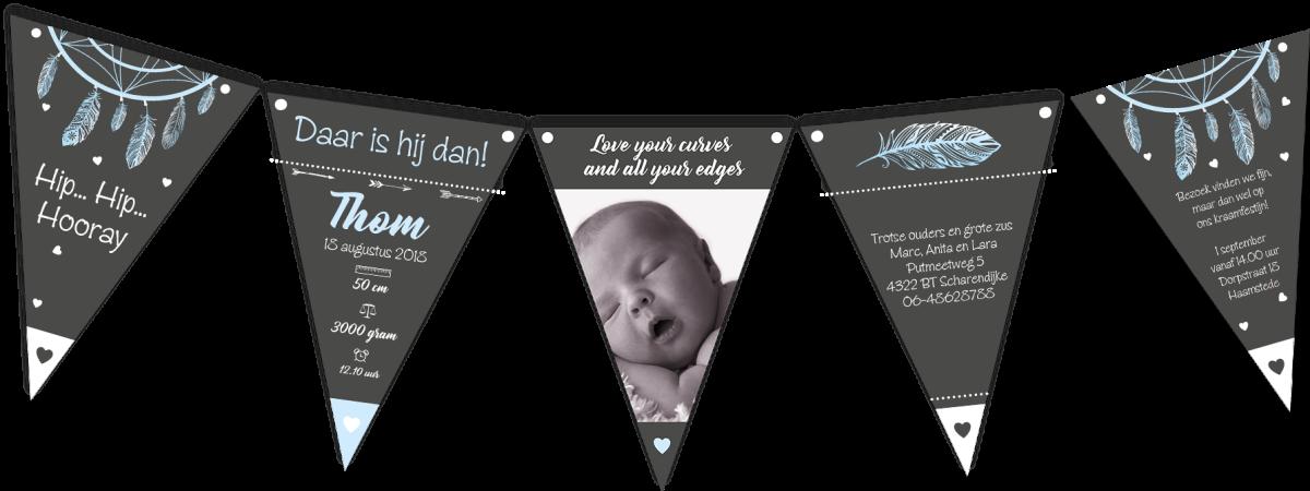 Geboortekaartje vlaggetjes vlaggenlijn