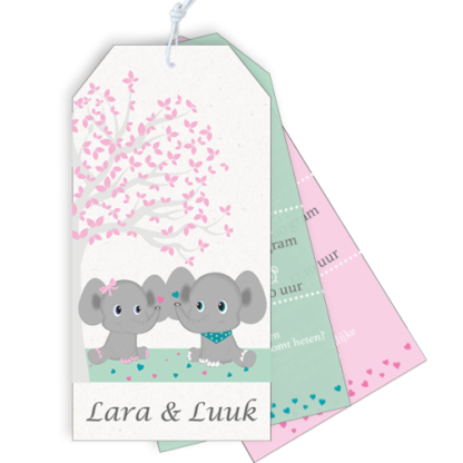 Geboortekaartje label tweeling met olifantjes