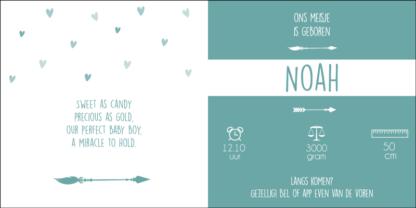 Geboortekaartje droomvanger en veertjes