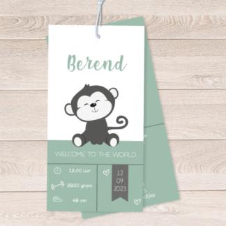 Geboortekaartje label met lief aapje