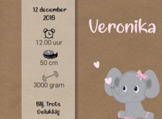 Geboortekaartje met kalkpapier wikkel en olifantje meisje