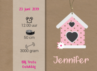 Geboortekaartje met kalkpapieren wikkel en vogelhuisje meisje