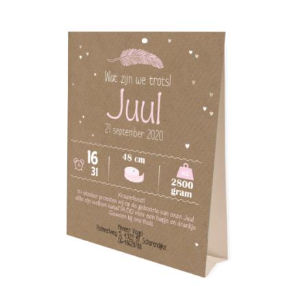 Geboortekaartje tentkaartje met droomvanger roze en wit voor meisje