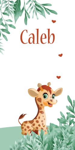 Geboortekaartje jongen giraf