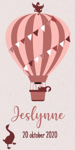 Geboortekaartje met luchtballon met vogeltjes