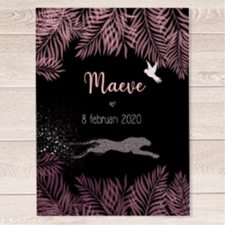 geboortekaartje jungle luipaard roze