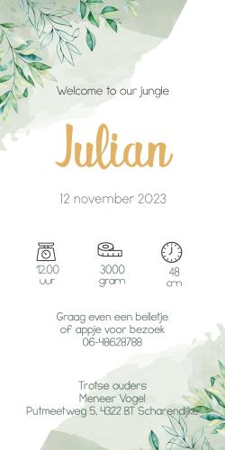Julian jungle set 200x100-1