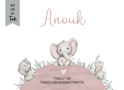 De naam van jullie kindje staat boven de olifantjes, met mooie oud roze en grijs groene tinten. Prachtig, lief en uniek, dat is dit geboortekaartje.