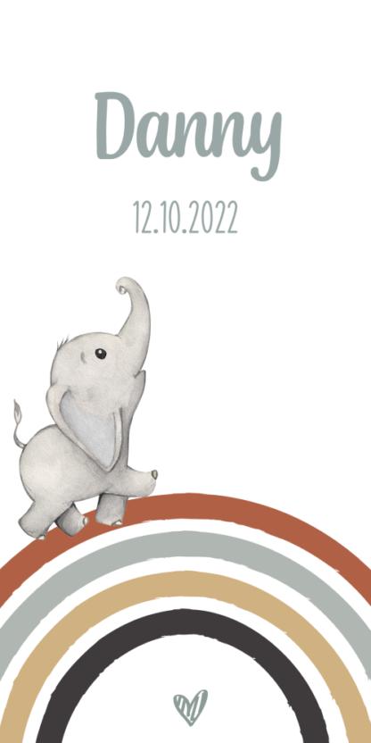 Geboortekaartje regenboog met olifantje