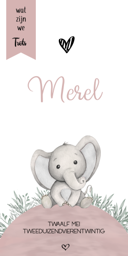 Geboortekaartje met meisje olifantje