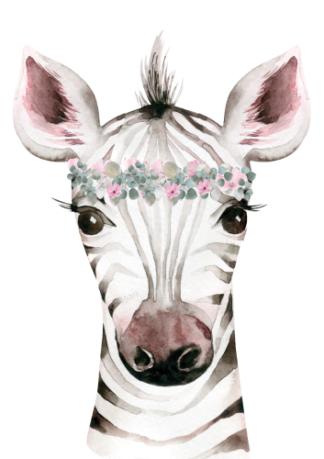 Kinderkamerposter Zebra Portret